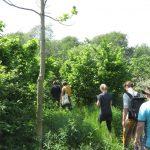 op avontuur in voedselbos Ketelbroek met Puur Permacultuur