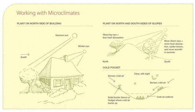 Permacultuur Microklimaten